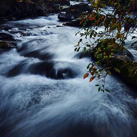 Vishwanath Bhat - Palisades Creek Idaho Autumn