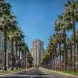 Hanny Heim - Palm-Lined Parkway