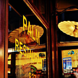 Miriam Danar - Palm Restaurant with Antique Lamps - Restaurants of New York