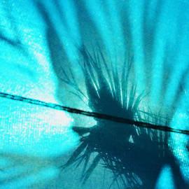 Sharon Cummings - Palm Tree Art - Tropical Shadows by Sharon Cummings