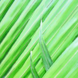 Lali Kacharava - Palms leaf
