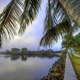 Debra and Dave Vanderlaan - Palms Over the Waterway