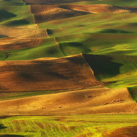 Reflective Moment Photography And Digital Art Images - Palouse Morning