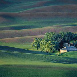 Nikolyn McDonald - Palouse - Washington - Farms - #3