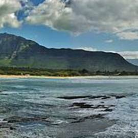 Craig Wood - Panorama of Makaha Beach