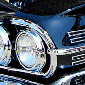 Mark Spearman - panoramic black Impala