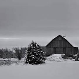 Peter Lessey - Panoramic Winter