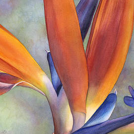 Sandy Haight - Paradise Bird