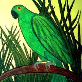 Neil Stuart Coffey - Parrot