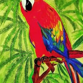 Renee Michelle Wenker - Parrot in Paradise