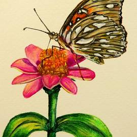 Zina Stromberg - Passion butterfly on zinnia