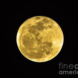 Al Powell Photography USA - Passover Full Moon