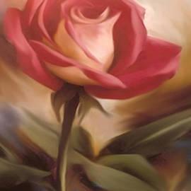 Dennis Buckman - Pastel Light Red Rose