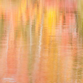 Michael Blanchette - Pastel Reflection