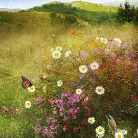 R christopher Vest - Pastoral Meadow With Monarch And Yellowthroat