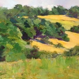 Carol Hopper - Patchwork Fields in France