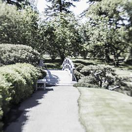Dan Panattoni - Path Through the Garden