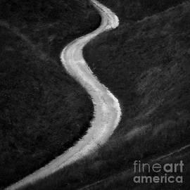 Tomasz Grzyb - The Path