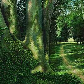 Michael Frank - Pathway Through the Sycamores