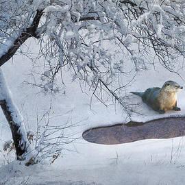 R christopher Vest - Patience River Otter