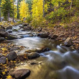 Maria Coulson - Peaceful Creek