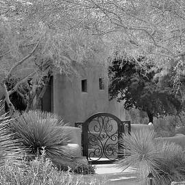 Gordon Beck - Peaceful Entry Monochrome