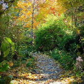 Kari Espeland - Peaceful Path