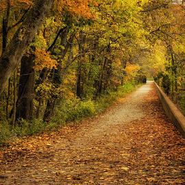 Cheryl Davis - Peaceful Pathway
