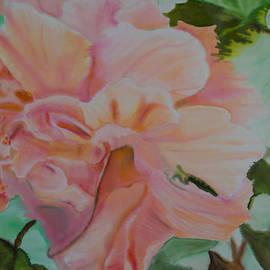 Kathy Goodson - Peach Hibiscus