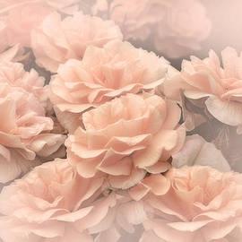 Jennie Marie Schell - Peach Pastels Rose Garden