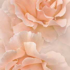 Jennie Marie Schell - Peach Rose Flowers Bouquet