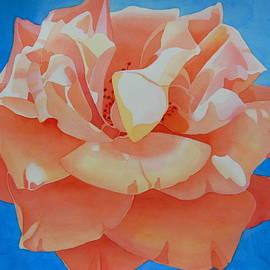 Mary Kosary - Peach Rose