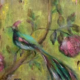 Kathy Stiber - Peacock