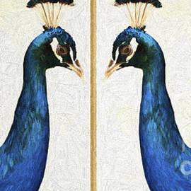 Sheila Smart - Peacock vanity