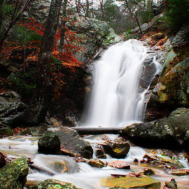 Shelby  Young - Peavine Falls in Autumn