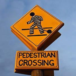 Denise Mazzocco - Pedestrian Crossing