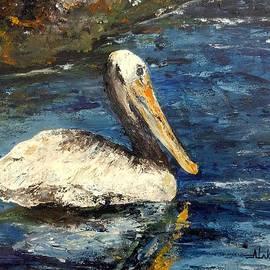 Alan Lakin - Pelican