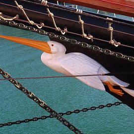 Rumyana Whitcher - Pelican Of London Tall Ship Detail
