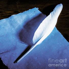 Kim Lessel - Pen Feather