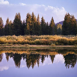 J Riley Stewart - Perfect Reflection on the Snake RIver