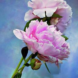 Theresa Tahara - Perfume And Powdery Pastels