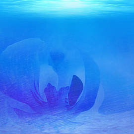 Xueyin Chen - Blue Ocean