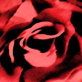 Catherine Lott - Petals of Velvetty Red