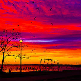 Kathy Liebrum Bailey - Phenomenal Skies