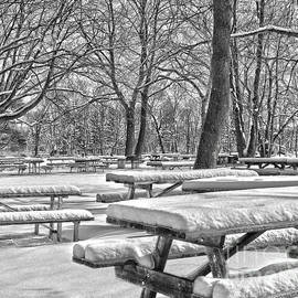 Tom Gari Gallery-Three-Photography - Picnic Tables In The Snow