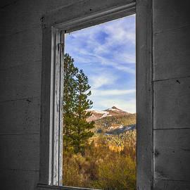 Mitch Shindelbower - Picture Window