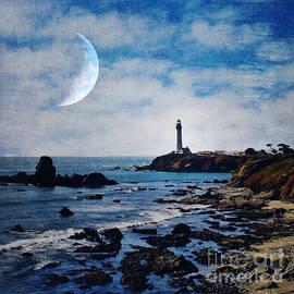 Elena Nosyreva - Pigeon point lighthouse