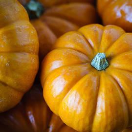 Christi Kraft - Pile of Pumpkins
