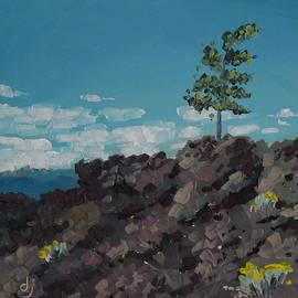 Dorothy Jenson - Pine Tree in Lava Land