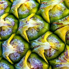 Jijo George - Pineapple Skin